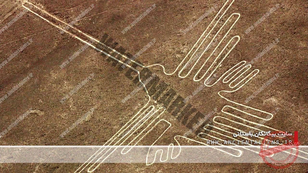 از طرحهای خطوط نازکا