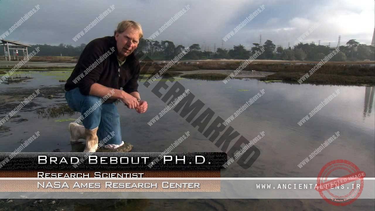 Brad Bebout