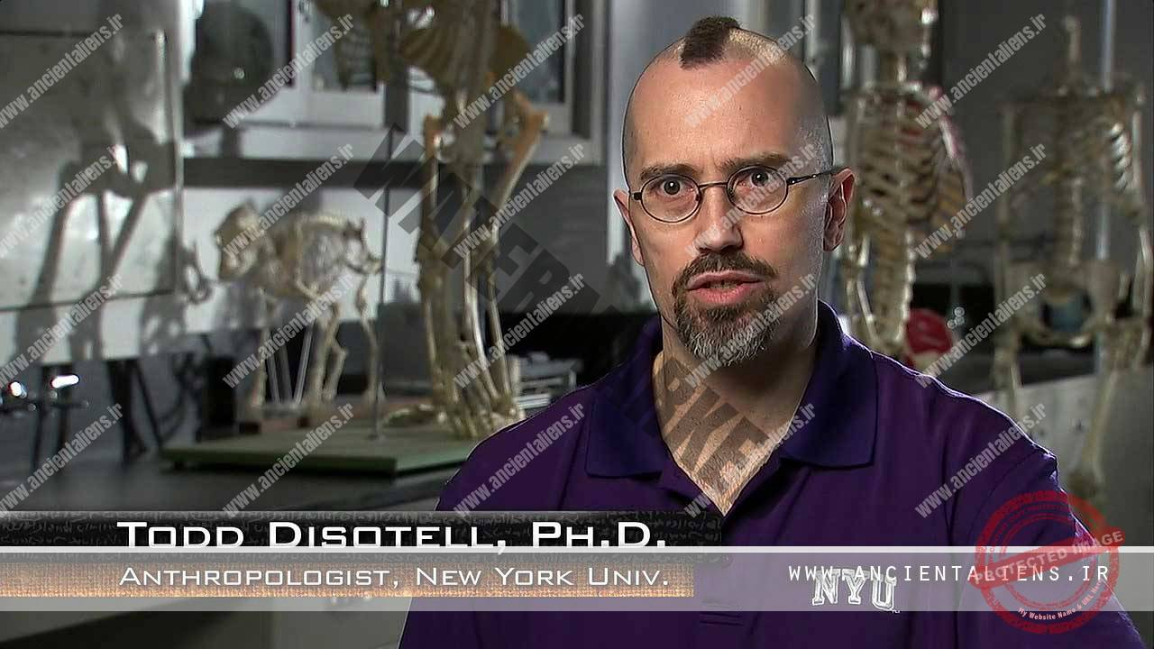 Todd Disotell